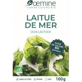 LAITUE DE MER ALGUE ALIMENTAIRE BIOLOGIQUE - 100 Gr