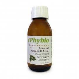 ARTEMISIA VULGARIS Mother Tincture Phybio 125 ml