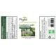 Eucalyptus Radiata Huile essentielle PHYBIO - 10ml