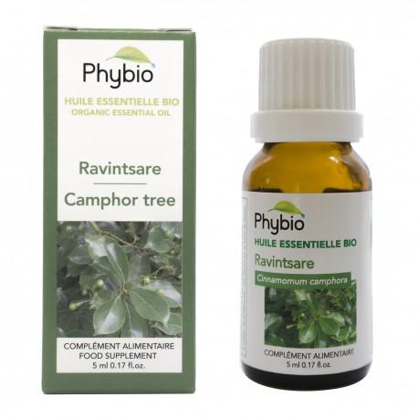 Camphor essential oil Phybio - Fl. 5ml